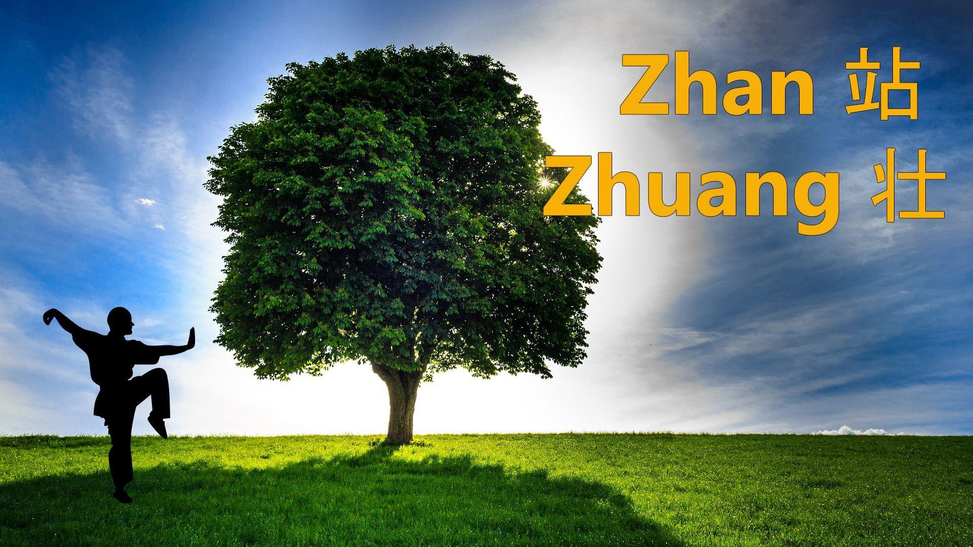 Chi Kung Zhan Zhuang (Postura del Árbol)